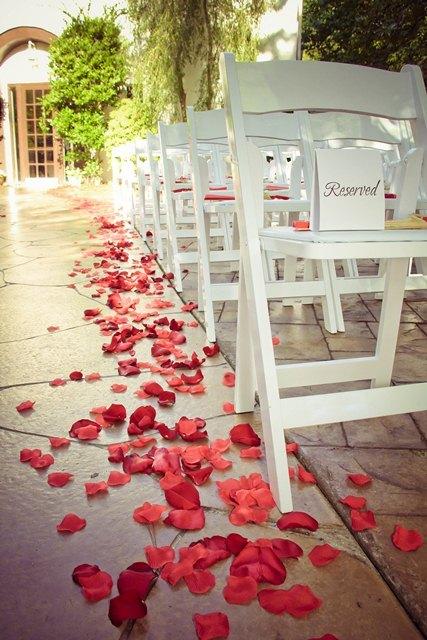 pop up wedding