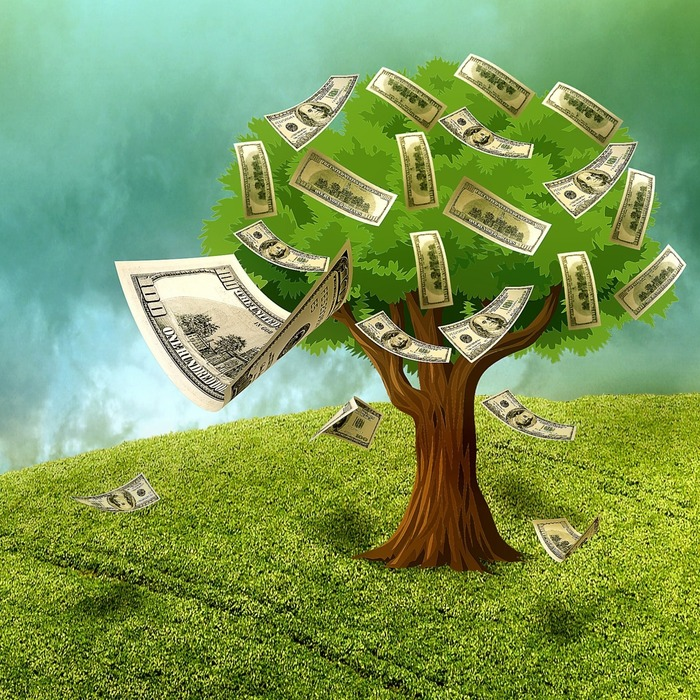 save money for your wedding; money tree,  tree with money and leaves